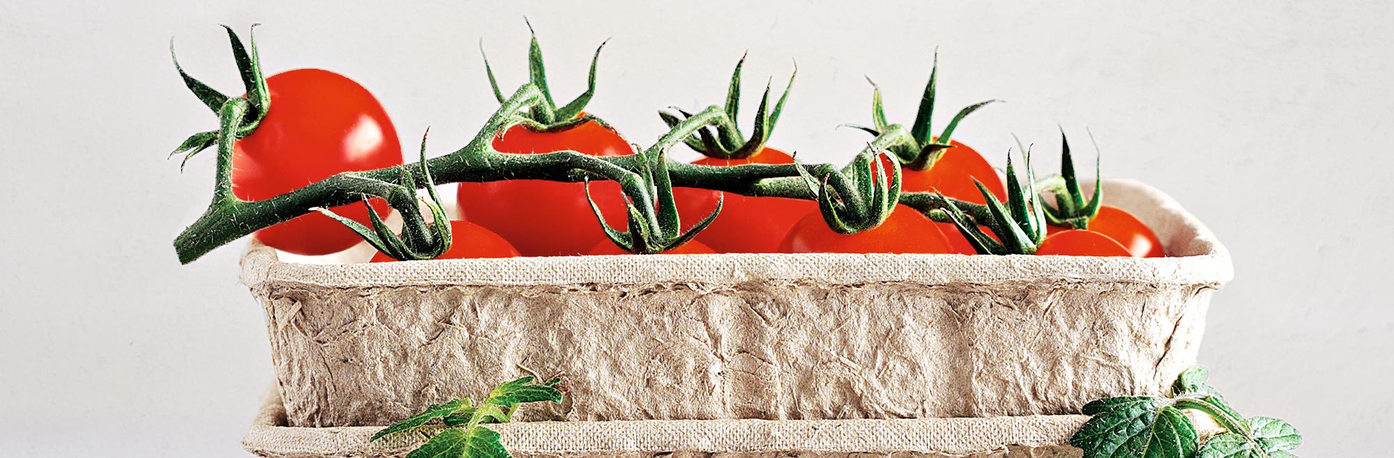 tomato punnet