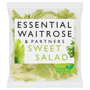 Essential Sweet Salad
