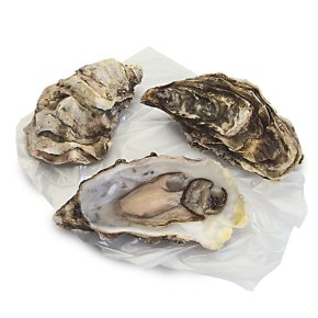 No.1 Fresh Oysters