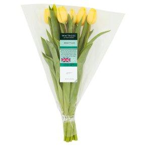 Waitrose British Tulips