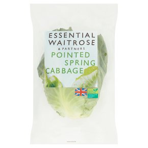 Essential Pointed Spring Cabbage