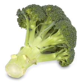 Essential Broccoli