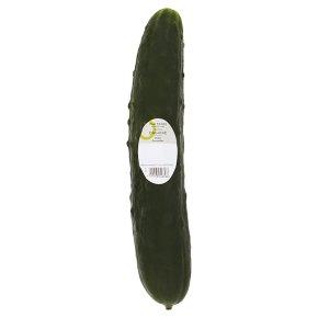 Duchy Organic Ridge Cucumber