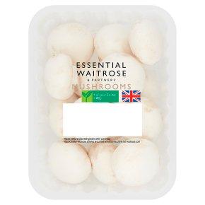 Essential Cup Mushrooms