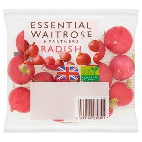 Essential Radish