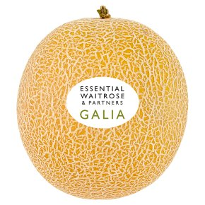 Essential Galia Melon
