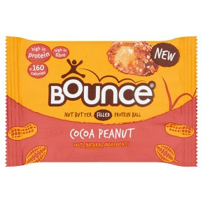 Bounce Cocoa Peanut Protein Ball
