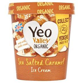 Yeo Ice Cream Sea Salted Caramel