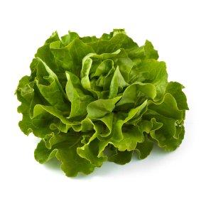 Natoora French Butterhead Lettuce