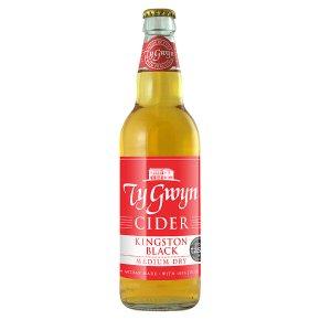 Ty Gwyn Sparkling Cider Herefordshire