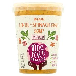 Tideford Lentil & Spinach Dhal Soup