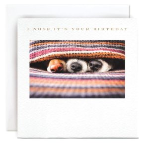 Dog I Nose It's Your Birthday Card