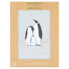 Waitrose Christmas Bear & Penguin Cards