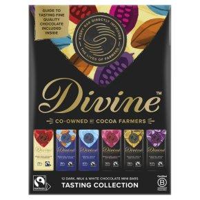 Divine 12 Little Bars