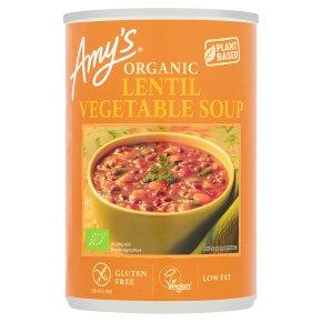 Amy's kitchen lentil vegetable soup