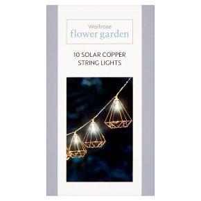 Waitrose 10 Solar Copper String Lights