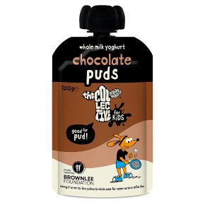 The Collective Dairy For Kids Chocolate Puds