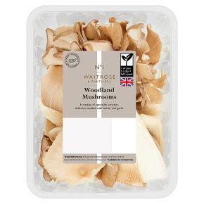 No.1 Woodland Mushrooms