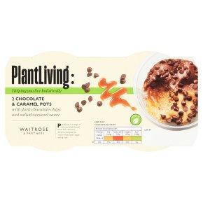Plantlife: 2 Chocolate & Caramel Pots