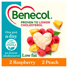 Benecol Low Fat Raspberry & Peach