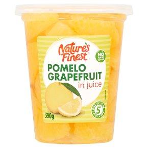 Nature's Finest Grapefruit in Juice