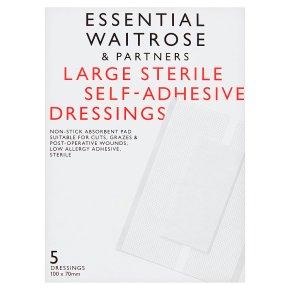 Essential Large Dressing