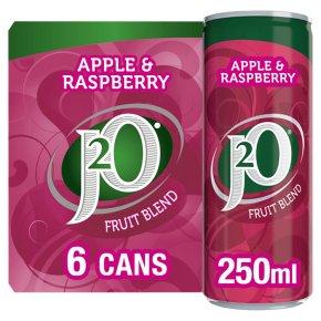 J2O fridge pack apple & raspberry