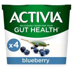 Activia Blueberry Yogurts