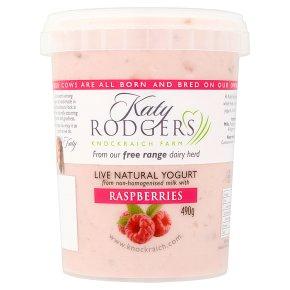 Katy Rodgers Yogurt with Raspberries