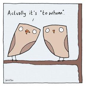 Owls Joke Blank Card
