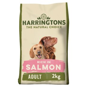 Harringtons Salmon & Potato Adult Dog Complete