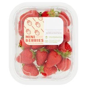 Hugh Lowe Farms Mini Berries