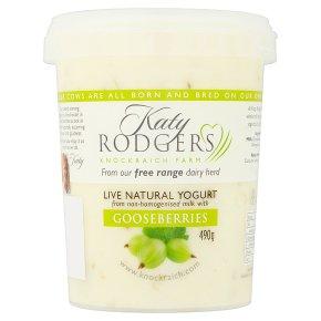 Katy Rodgers Yogurt with Gooseberries