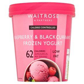 LoveLife Raspberry & Blackcurrant Frozen Yogurt